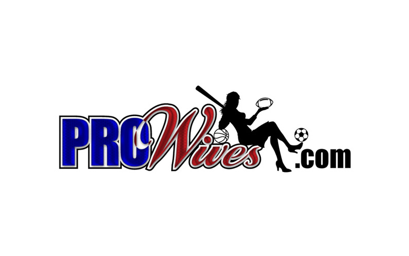 logo prowives